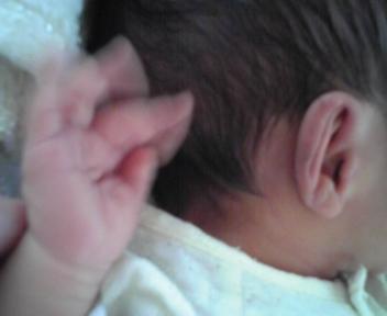 獅子丸4歳・虎丸1ヶ月検診